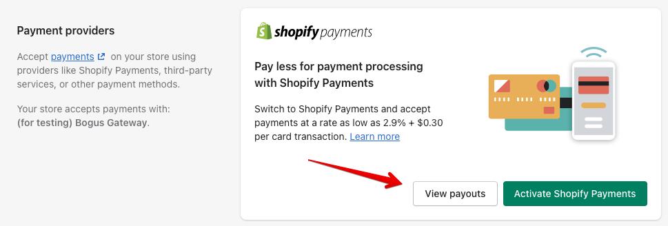 14 - shopify payouts